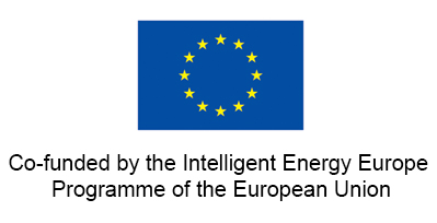 co-funded-iee-vert